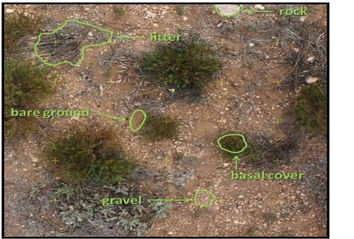 Fig 4.jpg